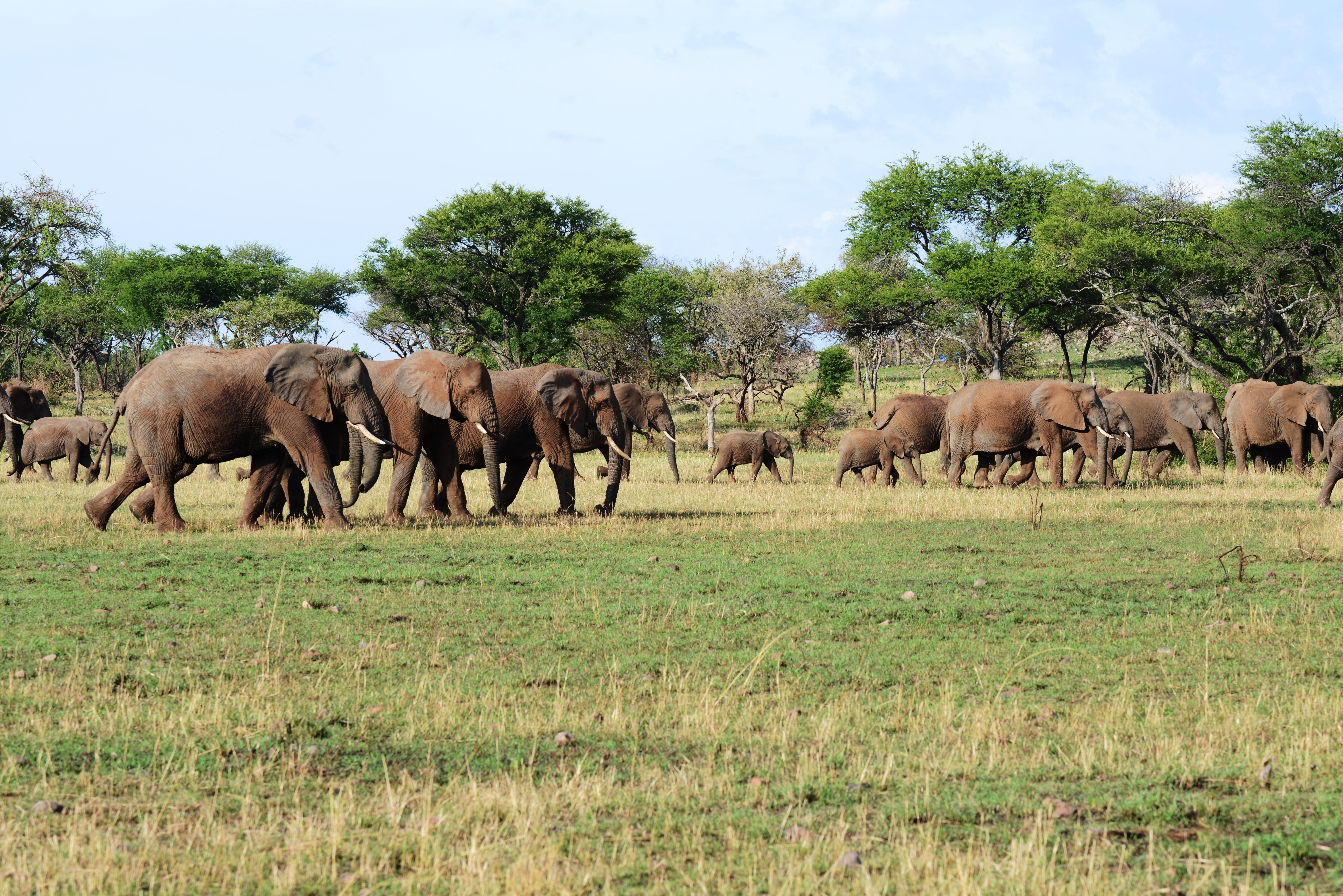 Tanzania (16.-25. Oktober 2012)