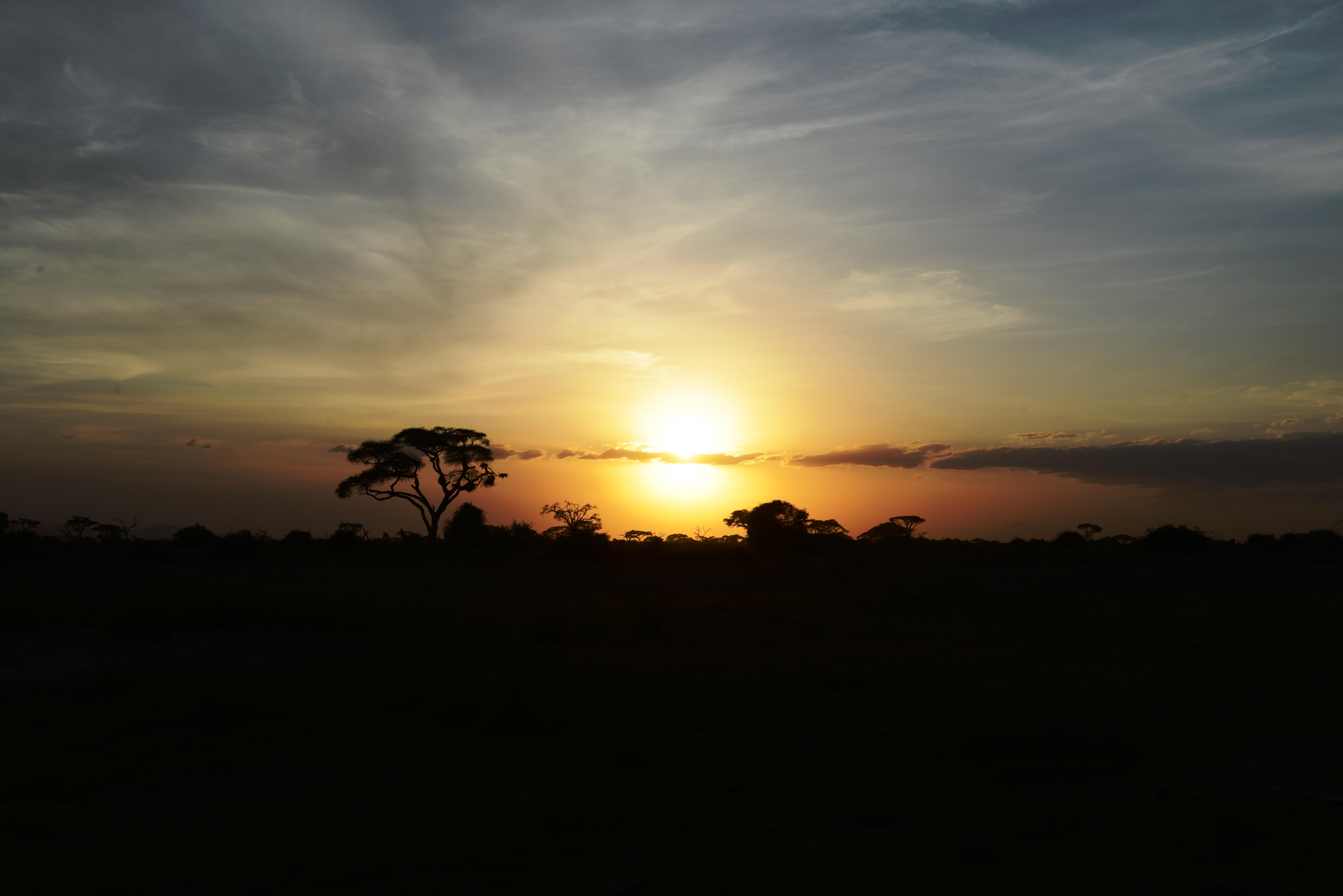 Kenya  2. Teil (25. Oktober – 1. November 2012)